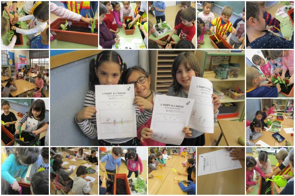Escola_L'Estel_Collage_taller_hort
