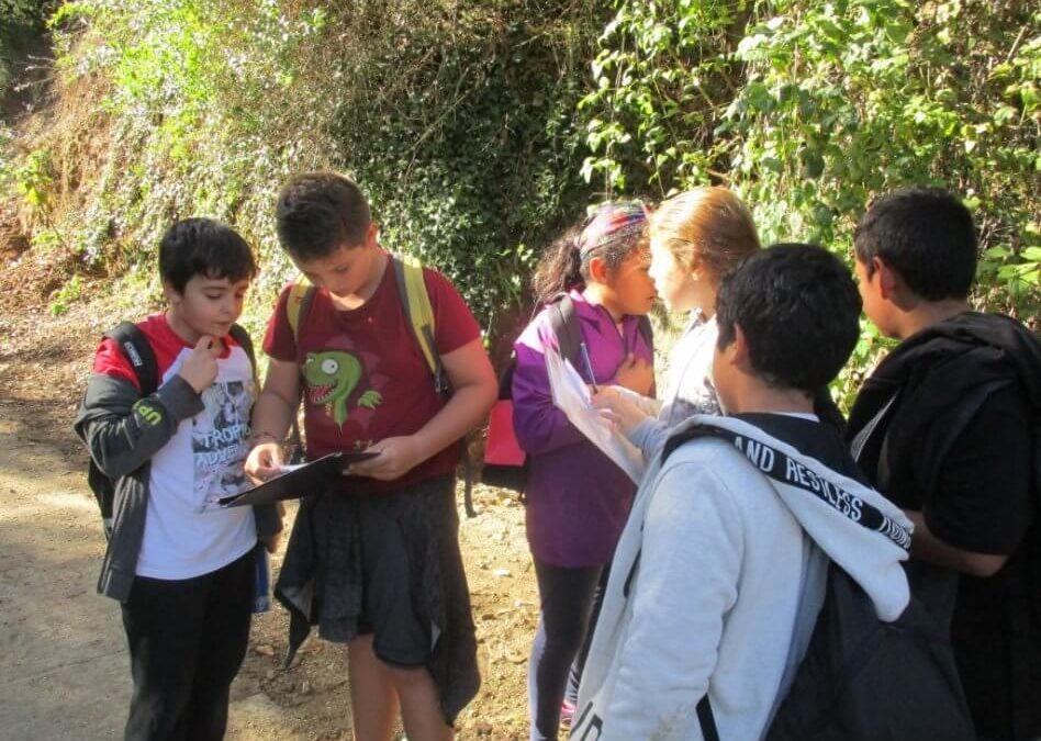 Sortides de tardor: Can Rigol i Pantà de Vallvidrera