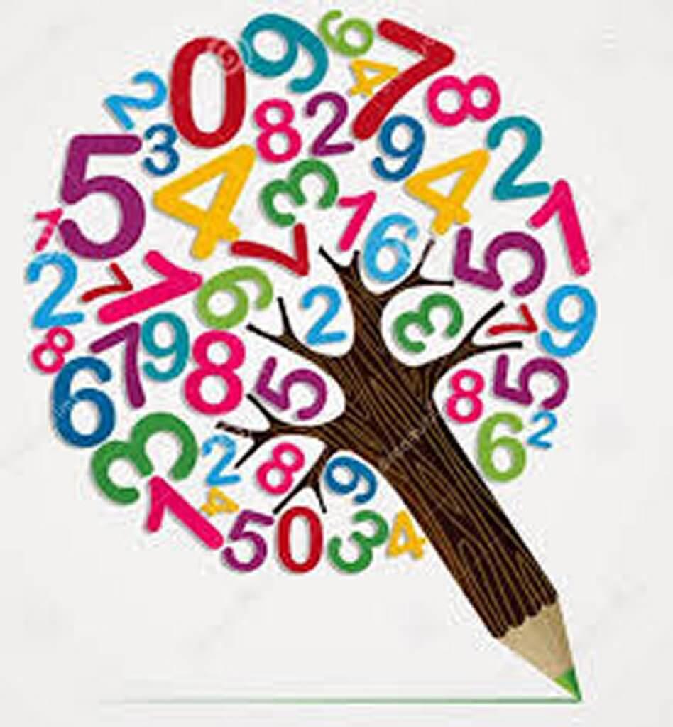 Experiències matemàtiques a través dels tallers!