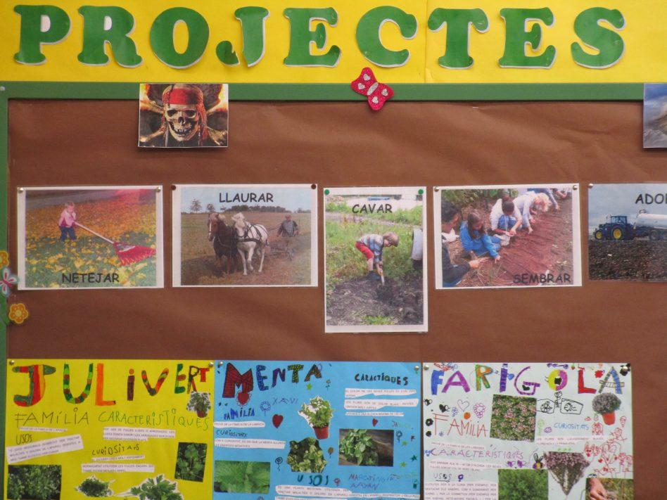 """Exposicions del projecte """"L'hort a l'aula"""" .. (1r)"""