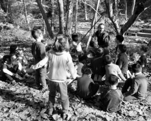 """Sortida de tardor al """"Parc de Gualba"""" … Educació Infantil"""